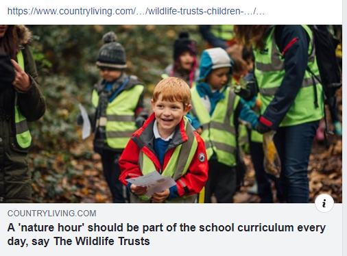 A Nature Hour Should Be Part Of The School Curriculum Every Day Say The Wildlife Trusts Pic