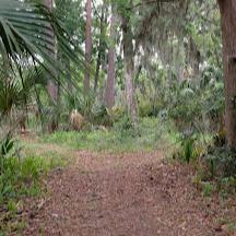 Ecological & Historical Preserve Timucuan